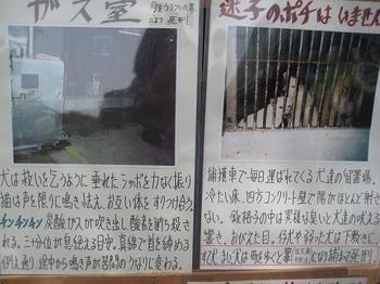 中ノ島まつり④.JPG