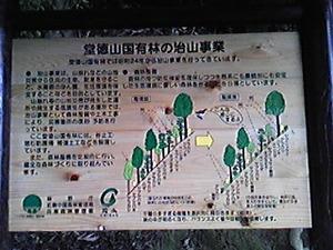 堂徳山国有林.jpg