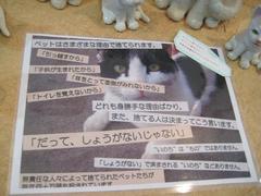 naoさん個展④.JPG